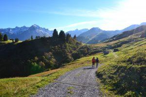 Herbstwandern1_Lech-Zuers-Tourismus (1 von 1)
